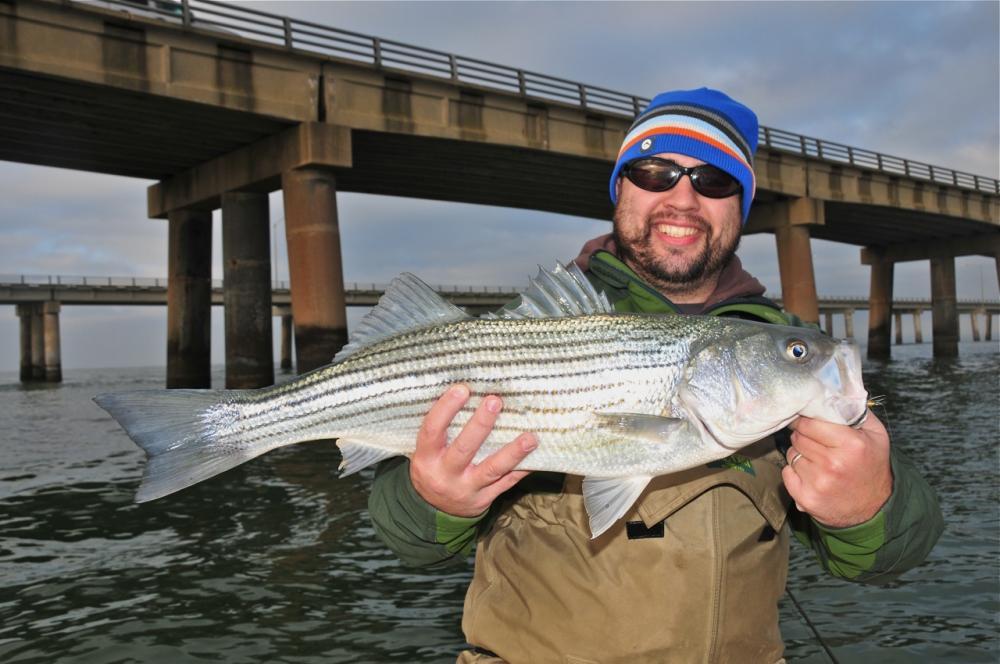 Chesapeake bay photos small water for Chesapeake bay bridge fishing report