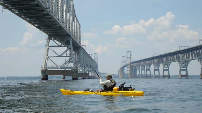 Fishing report light tackle jigging the chesapeake bay for Chesapeake bay bridge fishing report